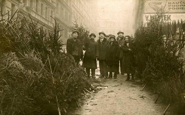Η αγορά των χριστουγεννιάτικων δέντρων, 1920