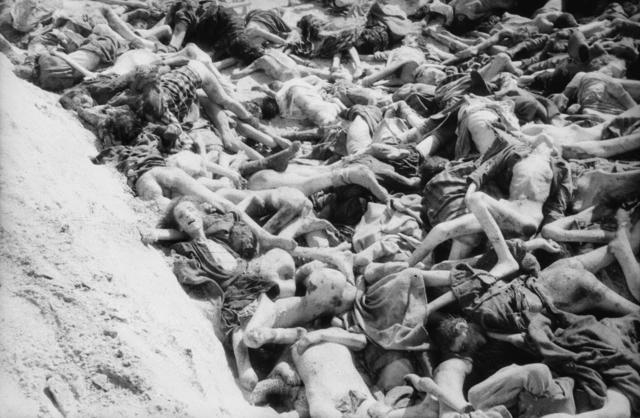 Eines_von_3_Massengräbern_in_Bergen-Belsen,_so_wie_es_von_den_Befreiern_vorgefunden_wurde,_1945