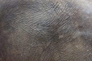 Μικροψυχολογία | Το βάθος του δέρματος